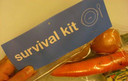 KitSurvie2011