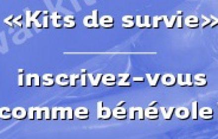 kitsurvie2015